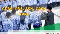 Indormasi CPNS, PNS, ASN, CASN dan PPPK